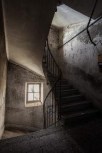 Birds house - Escalier