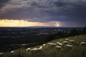 Ambiance crépusculaire en Allier - 27 Juin 2020